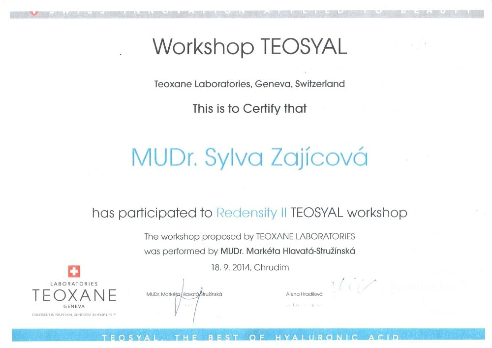workshop Teosyal