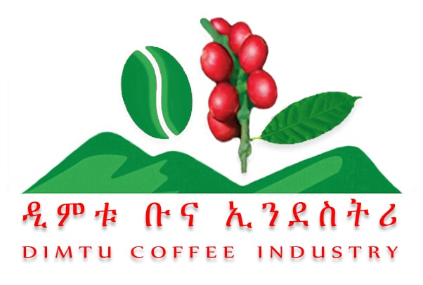 dimtu coffee industry