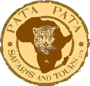Pata Pata Tours and Travel