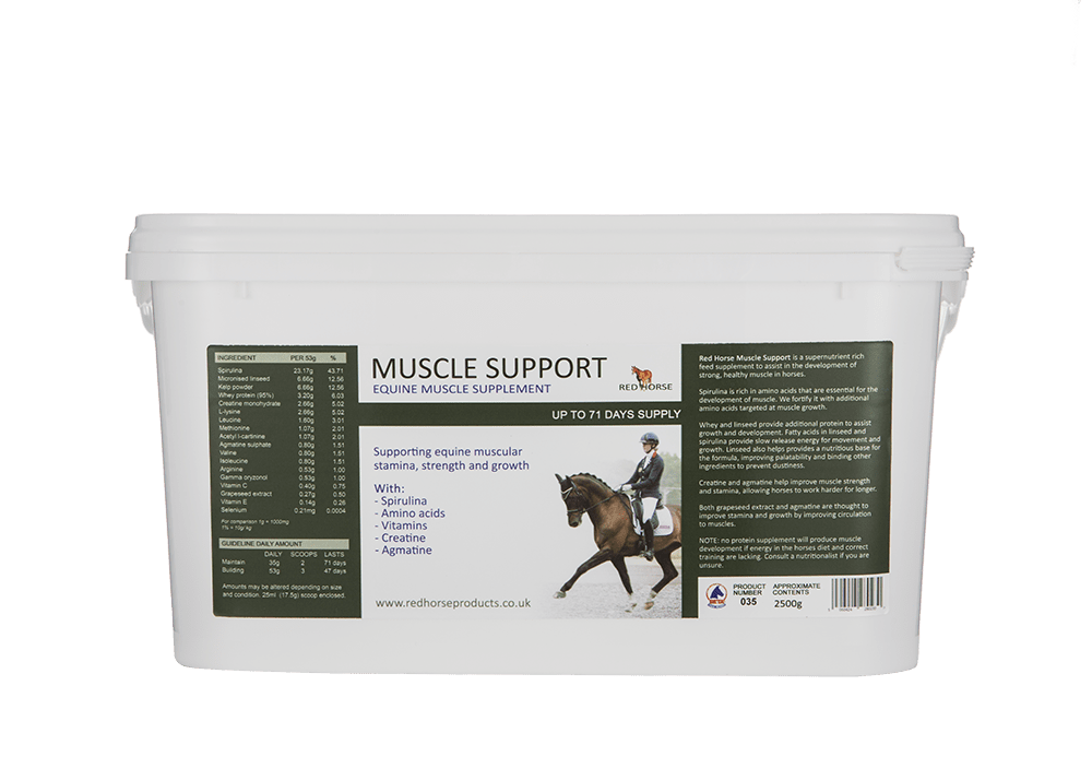 Muscle Support 2500g