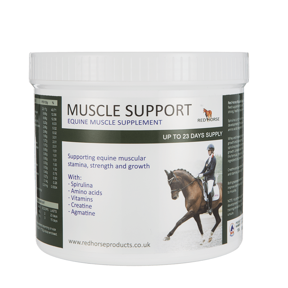 Muscle Support Small