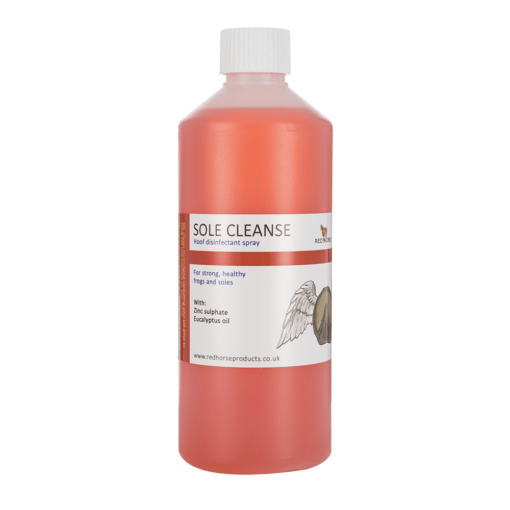 Sole Cleanse 500ml NS