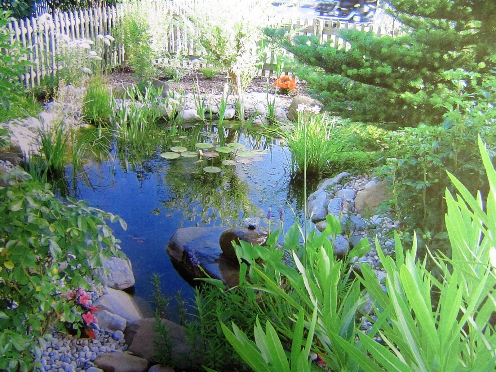 Gartenteich angelegt von Voigt Gartenbau