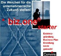 biz.one® starter, Businessplan-Software